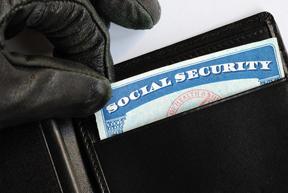 Social Security Card Theft